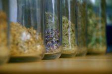herbal medicine - herbal remedies - herbal therapies